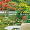 【泉湧寺】紅葉の見ごろとライトアップ!白砂・緑の松・紅葉の端正な庭