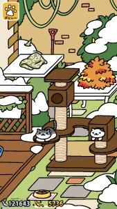 ウッドデッキの雪景色(ねこあつめ)