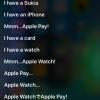 Siriがピコ太郎のペンパイナッポーアッポーペンPPAPに12種類の答え